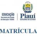 Seduc PI Matricula 2017 Online
